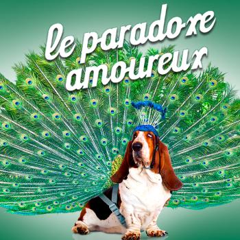 PARADOXE AMOUREUX BANNER